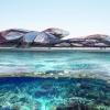 emergent_YEOSU OCEANIC PAVILION