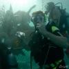 Curaçao aquarium