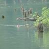 A Gyilkos-tó