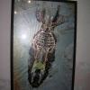 bangladesi kiállítás