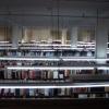 Halott könyvtár
