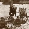 Leningrád 1941