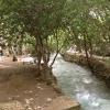 Sokan itt piknikeznek a hűs víz mellett