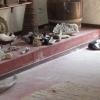 Üzlet macskákkal, eladó nélkül