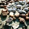Tsúszó-mozaik