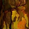 Ustráchaný starý jaskynný rytier