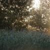 Futónapló - Ősz2