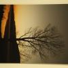 Objektíven - a Bódva völgye képekben