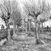 Van Gogh Alive 3
