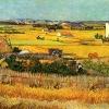 Van Gogh Alive 4