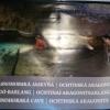 Világörökség a föld mélyében - részlet a kiállítás anyagából