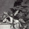 Goya: Sleeo of reason