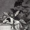 Goya: Sleeo of reason