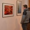 Az eNRA rozsnyói kiállítása