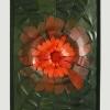 """""""Koža na obraze"""" – alebo obrazové kompozície z kože Výstava Kláry Kingy Dienes"""