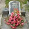 Garay Károly sírja felújítás előtt
